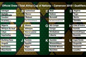 puchar narodów afryki 2019 kamerun